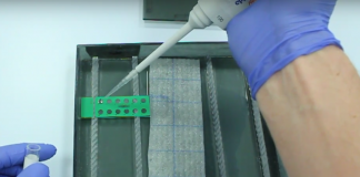 Pipetting a slide for an immune fluorescence test in a moisture chamber